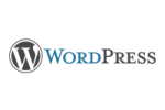 WordPress-Flare-Web-Design